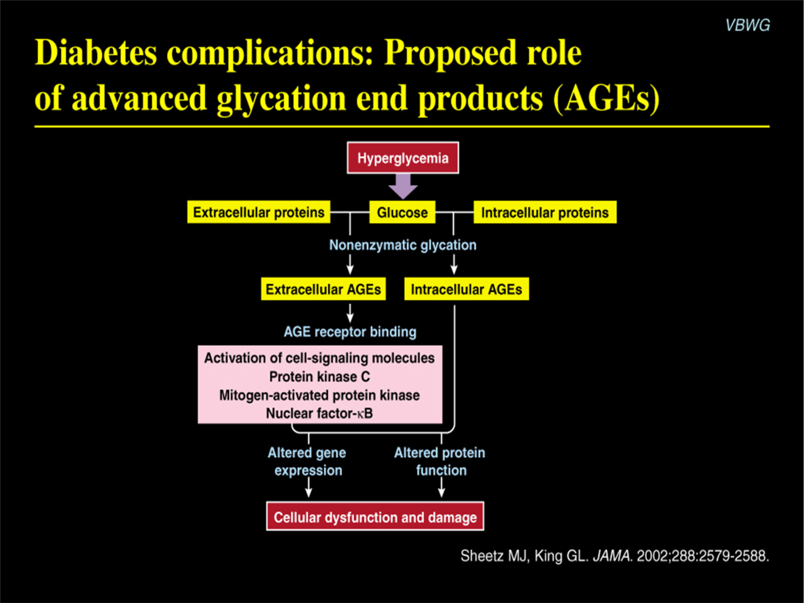 The Role of Advanced Glycation End Products in Diabetes and Heart Disease